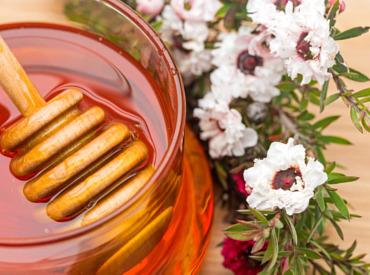 Die gesunde Wirkung von Manuka-Honig