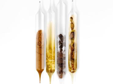 Superfoods: die Regenerationskraft von Antioxidantien