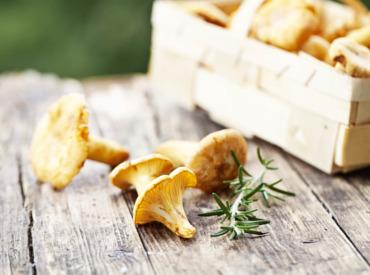 Pilze für eine gesunde und strahlende Haut