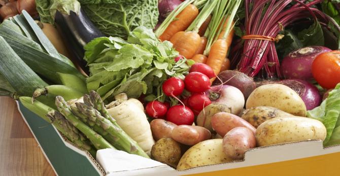 Ernährungstipps für schöne, gesunde Haut