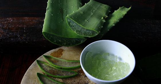 Aloe vera  : 5 façons de l'utiliser